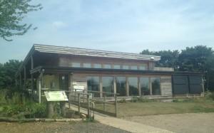 eco_building-300x187