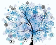 Winter fest pic
